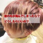 髪の毛が傷んでしまったら?どうするのがいいの?